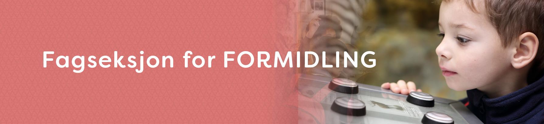 Fag_FORMIDLING
