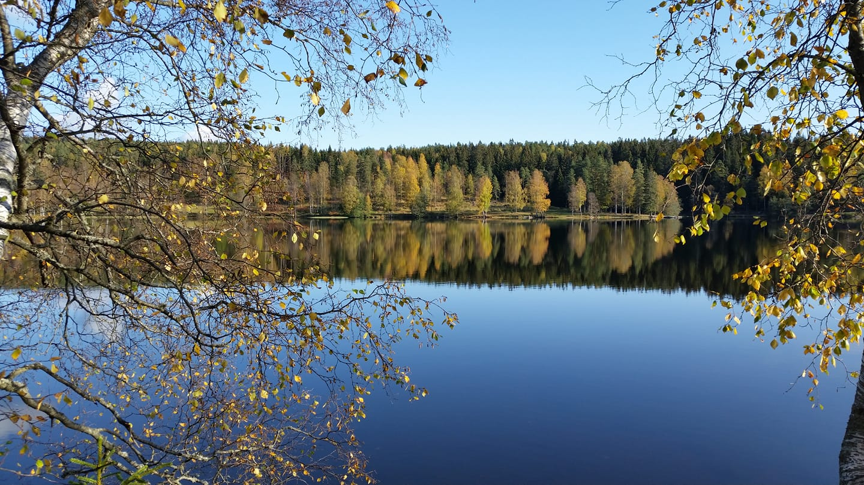 Sakker høstdag ved Sognsvann.